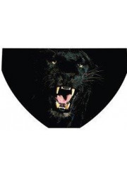 Panther (3 Semaines)